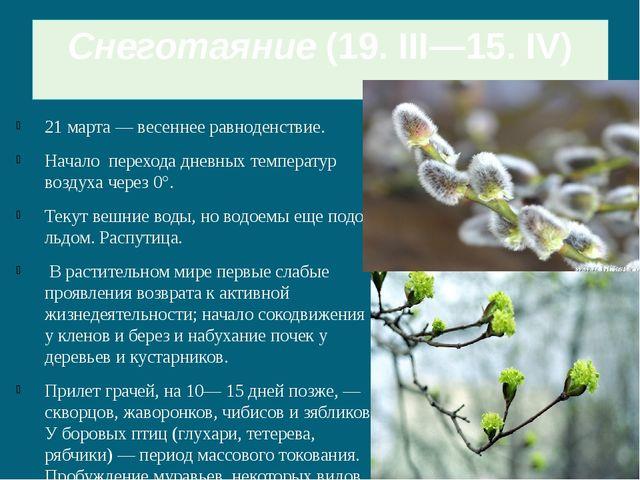 Снеготаяние(19. III—15. IV) 21 марта — весеннее равноденствие. Начало перехо...