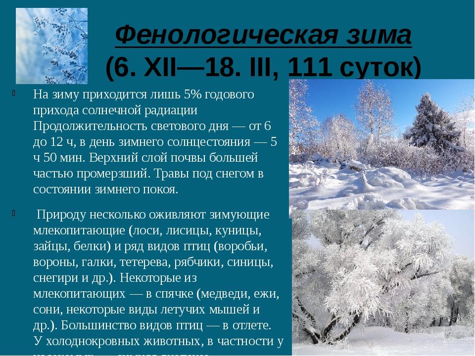 Фенологическая зима (6. XII—18. III, 111 суток) На зиму приходится лишь 5% г...