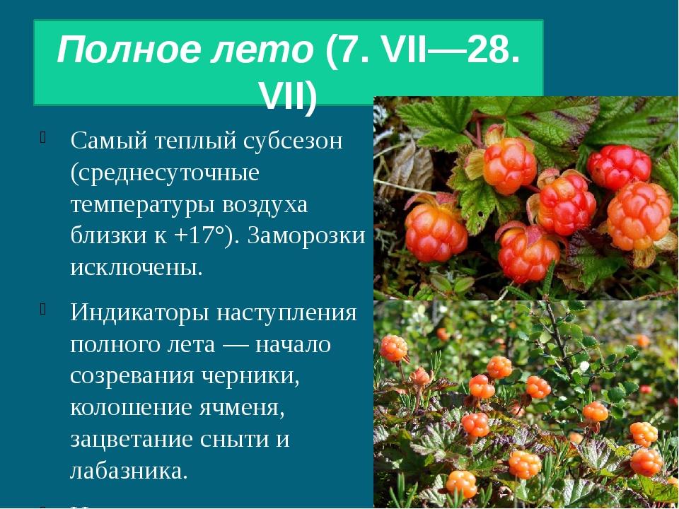 Полное лето(7. VII—28. VII) Самый теплый субсезон (среднесуточные температур...