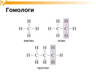 Гомологи