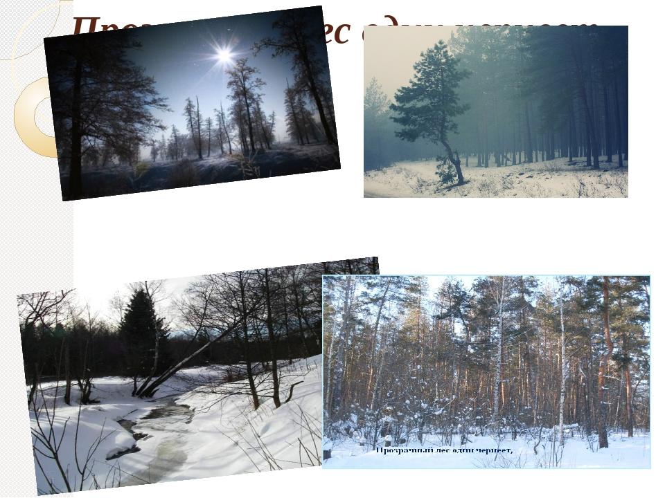 Прозрачный лес один чернеет,