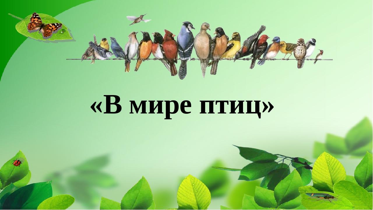 «В мире птиц»