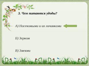 3. Чем питаются удоды? А) Насекомыми и их личинками Б) Зерном В) Змеями