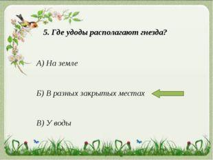 5. Где удоды располагают гнезда? А) На земле Б) В разных закрытых местах В) У