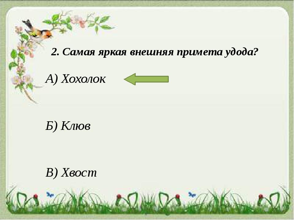 2. Самая яркая внешняя примета удода? А) Хохолок Б) Клюв В) Хвост