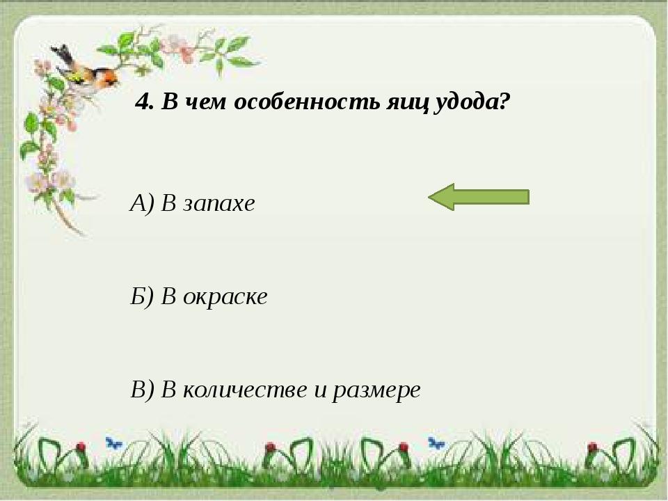 4. В чем особенность яиц удода? А) В запахе Б) В окраске В) В количестве и ра...