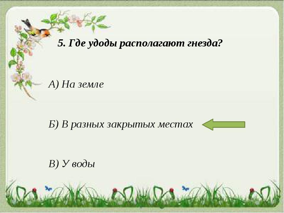 5. Где удоды располагают гнезда? А) На земле Б) В разных закрытых местах В) У...