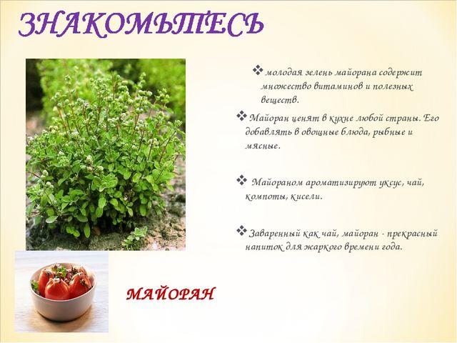 МАЙОРАН молодая зелень майорана содержит множество витаминов и полезных вещес...