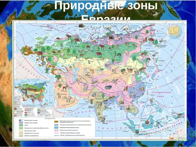 Природные зоны Евразии