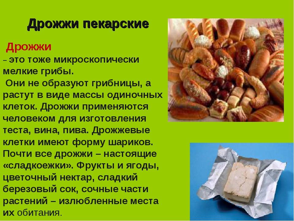 Дрожжи пекарские Дрожжи – это тоже микроскопически мелкие грибы. Они не образ...