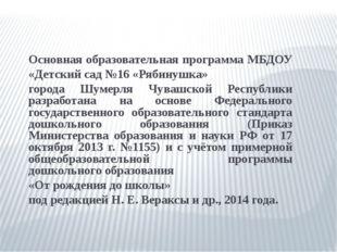 Основная образовательная программа МБДОУ «Детский сад №16 «Рябинушка» города