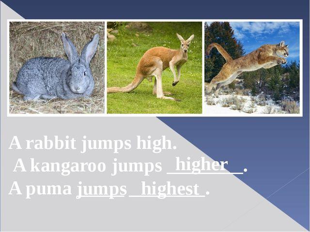 A rabbit jumps high. A kangaroo jumps ________. A puma _____ ________. higher...