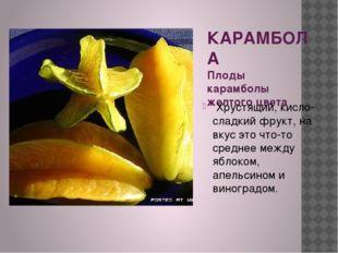 КАРАМБОЛА Плоды карамболы желтого цвета Хрустящий, кисло-сладкий фрукт, на вк