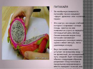 ПИТАХАЙЯ За необычную внешность питахайю также называют «фрукт дракона» или