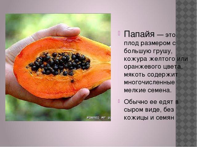 Папайя — это плод размером с большую грушу, кожура желтого или оранжевого цв...