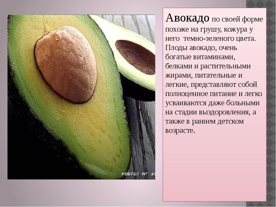 Авокадо по своей форме похоже на грушу, кожура у него темно-зеленого цвета. П...