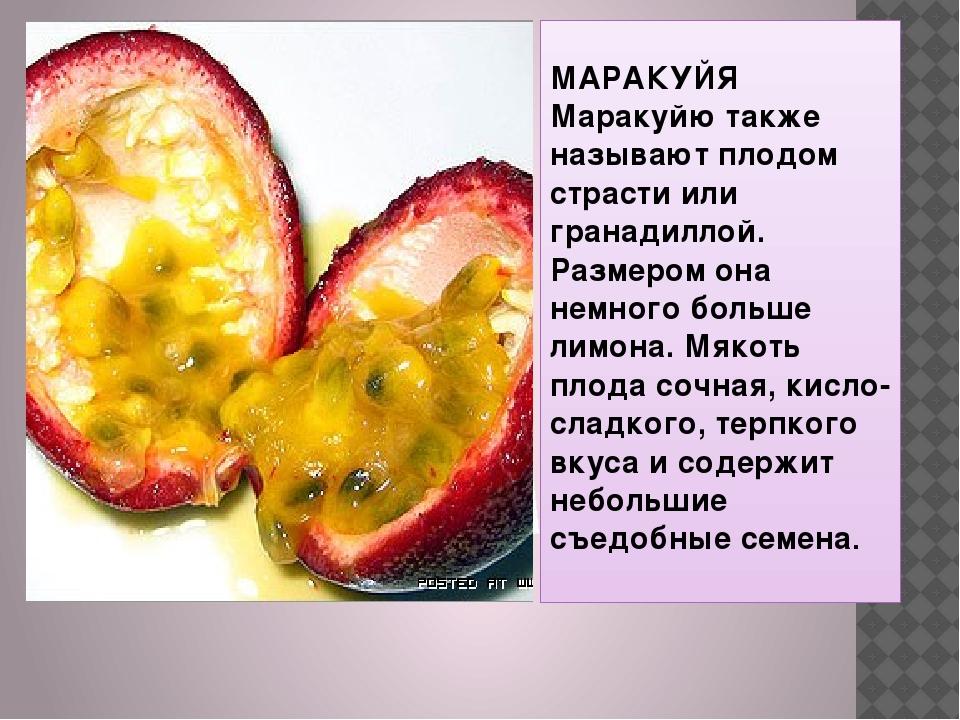 МАРАКУЙЯ Маракуйю также называют плодом страсти или гранадиллой. Размером он...