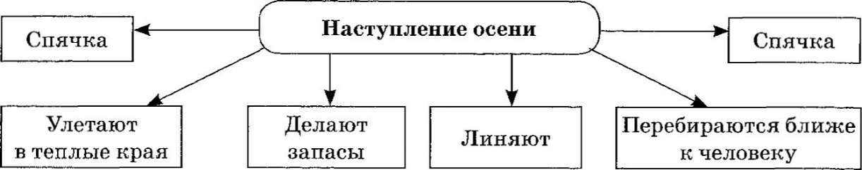 hello_html_m7bb8077.jpg