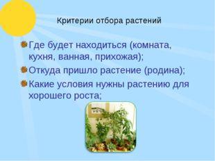 Критерии отбора растений Где будет находиться (комната, кухня, ванная, прихож