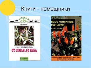 Книги - помощники