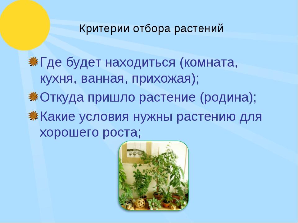 Критерии отбора растений Где будет находиться (комната, кухня, ванная, прихож...