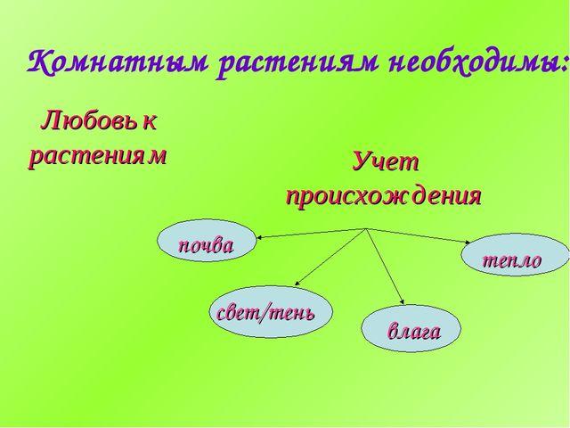 Комнатным растениям необходимы: Любовь к растениям Учет происхождения