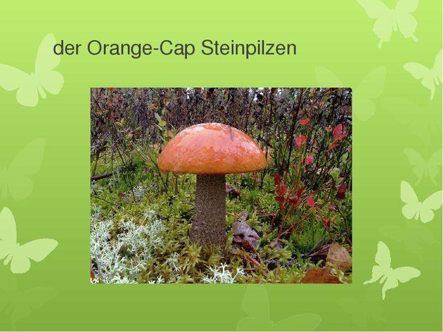 der Orange-Cap Steinpilzen
