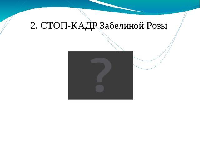2. СТОП-КАДР Забелиной Розы