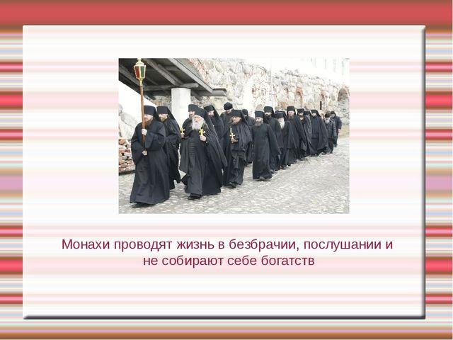 Монахи проводят жизнь в безбрачии, послушании и не собирают себе богатств