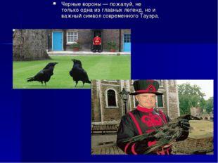 Черные вороны — пожалуй, не только одна из главных легенд, но и важный символ