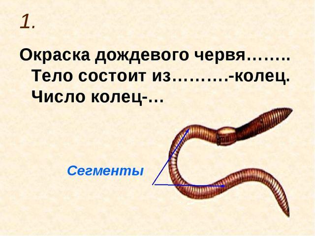 1. Окраска дождевого червя…….. Тело состоит из……….-колец. Число колец-… Сегме...