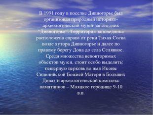 В 1991 году в поселке Дивногорье был организован природный историко-археологи
