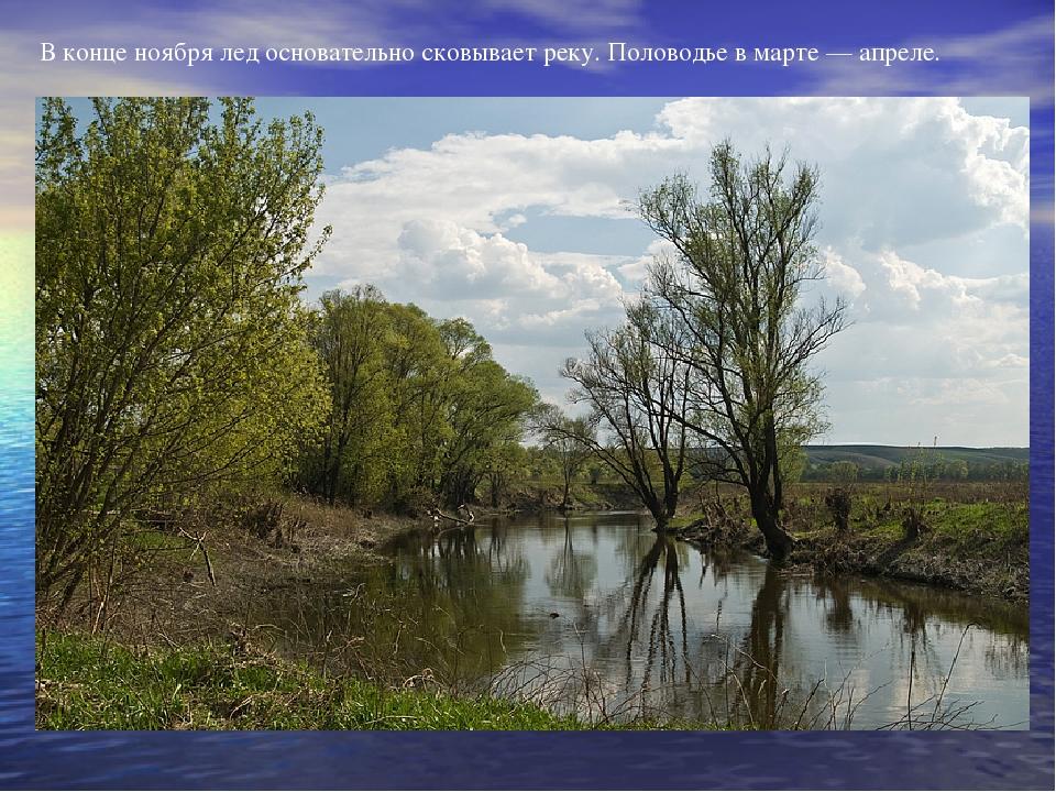 В конце ноября лед основательно сковывает реку. Половодье в марте — апреле.