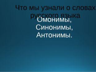 Омонимы, Синонимы, Антонимы. Что мы узнали о словах русского языка