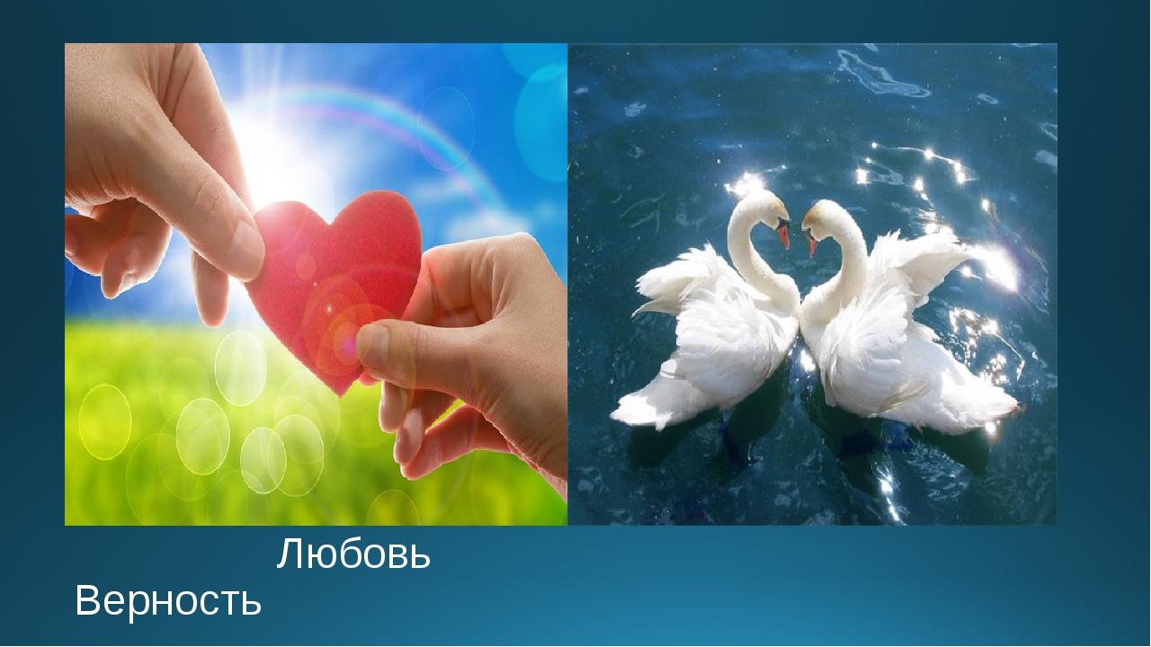 Любовь Верность