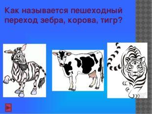 Как называется пешеходный переход зебра, корова, тигр?