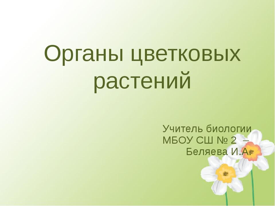 Органы цветковых растений Учитель биологии МБОУ СШ № 2 – Беляева И.А.