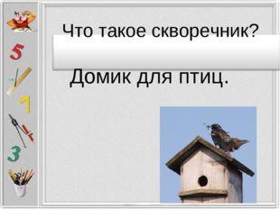 Домик для птиц. Что такое скворечник?