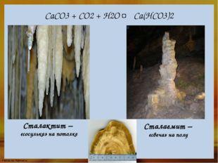 СаСО3 + СО2 + Н2О ↔ Са(НСО3)2 Сталактит – «сосулька» на потолке Сталагмит – «