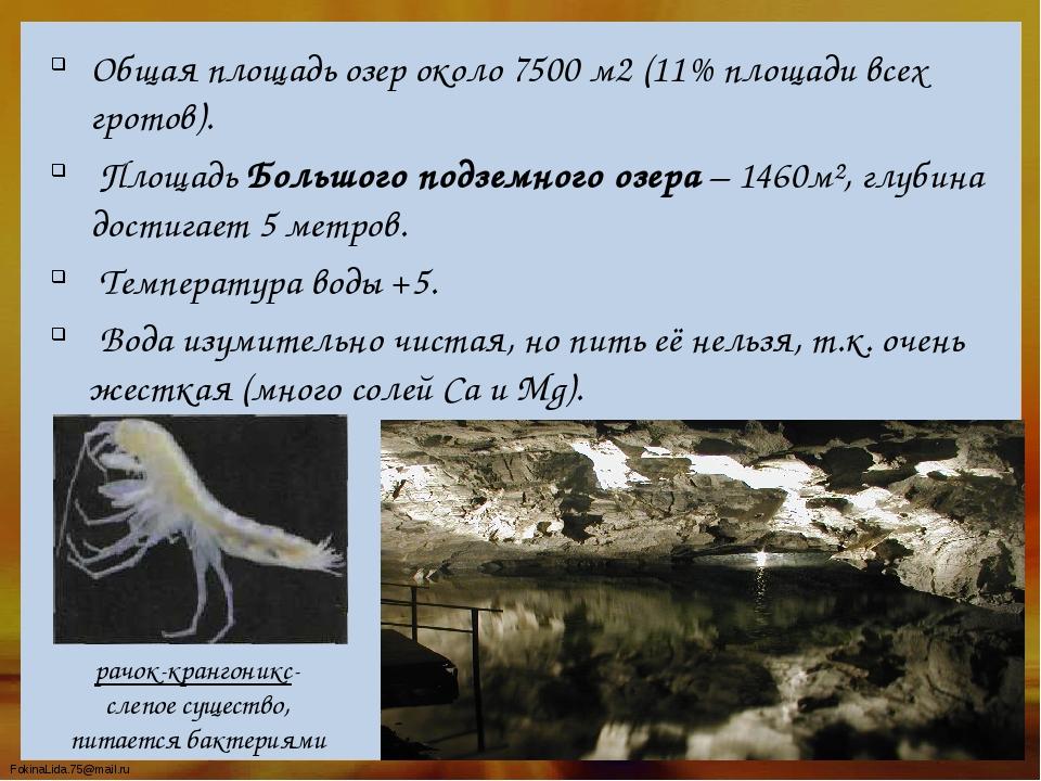 Общая площадь озер около 7500 м2 (11% площади всех гротов). Площадь Большого...