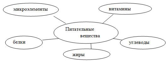 hello_html_5d03a8b9.jpg