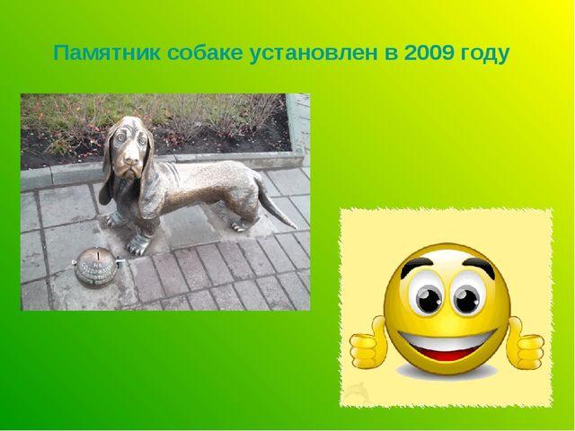 Памятник собаке установлен в 2009 году
