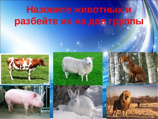 Назовите животных и разбейте их на две группы