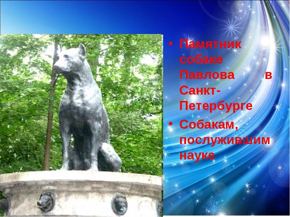 Памятник собаке Павлова в Санкт-Петербурге Собакам, послужившим науке