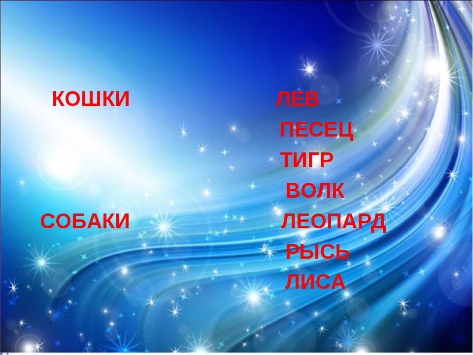 КОШКИ ЛЕВ ПЕСЕЦ ТИГР ВОЛК СОБАКИ ЛЕОПАРД РЫСЬ ЛИСА
