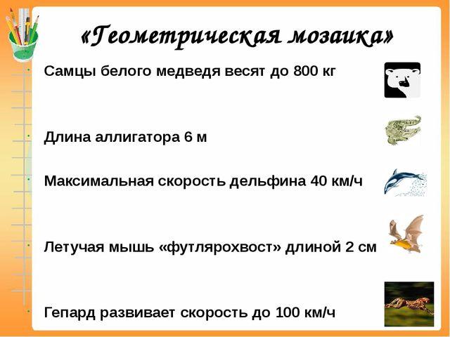 «Геометрическая мозаика» Самцы белого медведя весят до 800 кг Длина аллигатор...