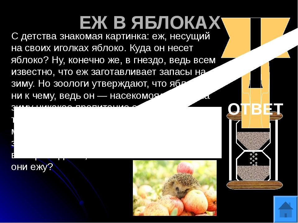 ДЕТЕКТИВ «ТРИ ПОРОСЕНКА» На ферме у одной из свиноматок украли трех маленьких...