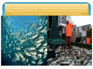Более 150 видов рыб населяют арктические и субарктические воды, в том числе в