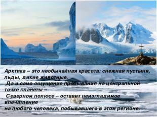 Арктика– это необычайная красота: снежная пустыня, льды, дикие животные. Да
