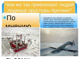 Чем же так привлекают людей ледяные просторы Арктики? По мнению ученых геолог